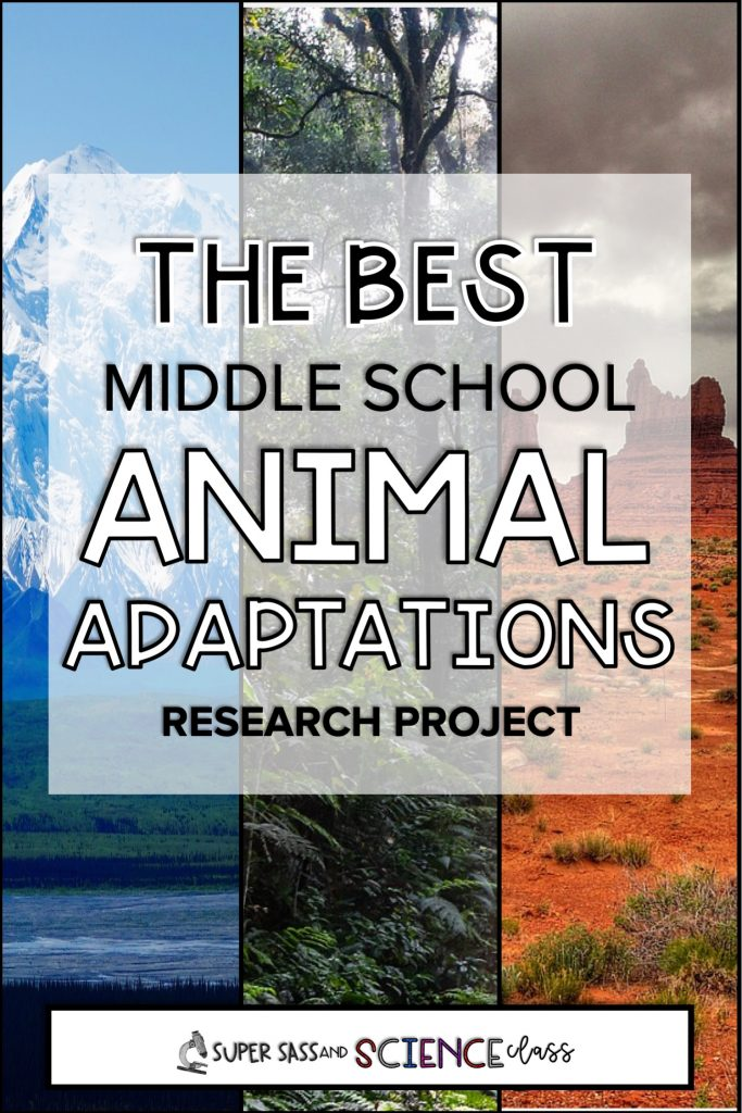 Shows a picture of a snowy mountain, rainforest, and desert. The best middle school animal adaptations project.